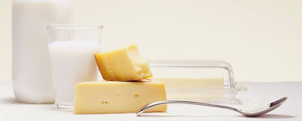 Milk and Milk Products (Dairy Products)