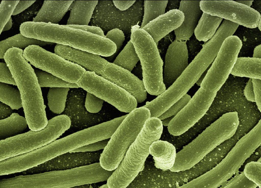 Urea Breath Test for Helicobacter pylori