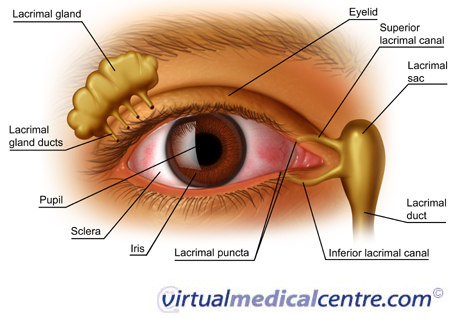 Effects of Dry eye syndrome on the eye